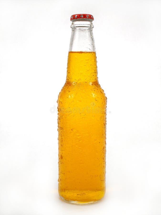 Bottiglia da birra fotografia stock libera da diritti