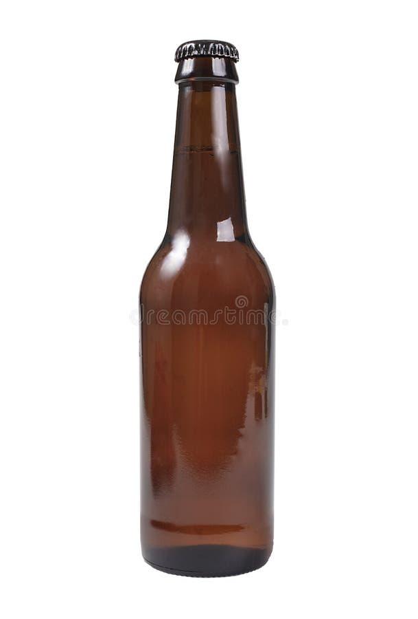 Bottiglia da birra isolata su bianco immagine stock