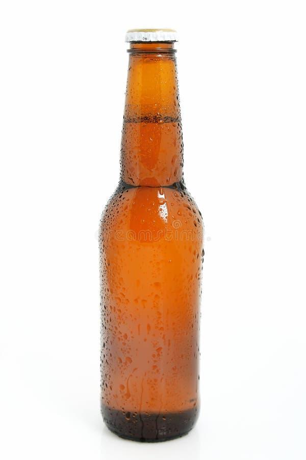 Bottiglia da birra raffreddata fotografia stock