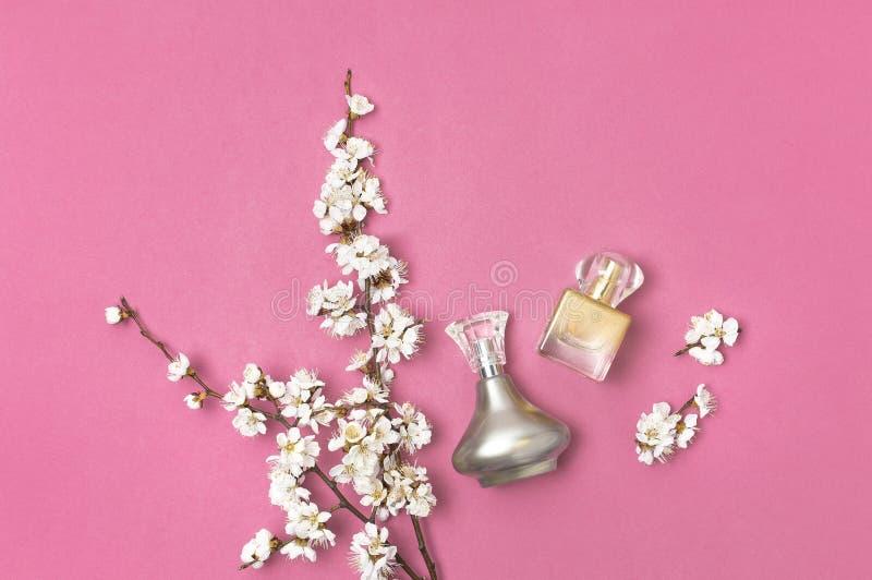 Bottiglia del profumo della donna e ramo dei fiori bianchi della ciliegia dell'albicocca della molla su fondo rosa luminoso Belle fotografie stock