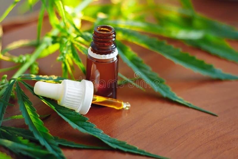 Bottiglia dell'olio della canapa CBD Prodotti medici della marijuana compreso la foglia della cannabis, CBD e sminuzzare olio, me fotografia stock