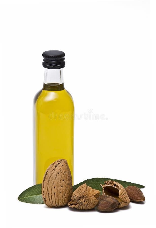 Bottiglia dell'olio di mandorle. immagine stock