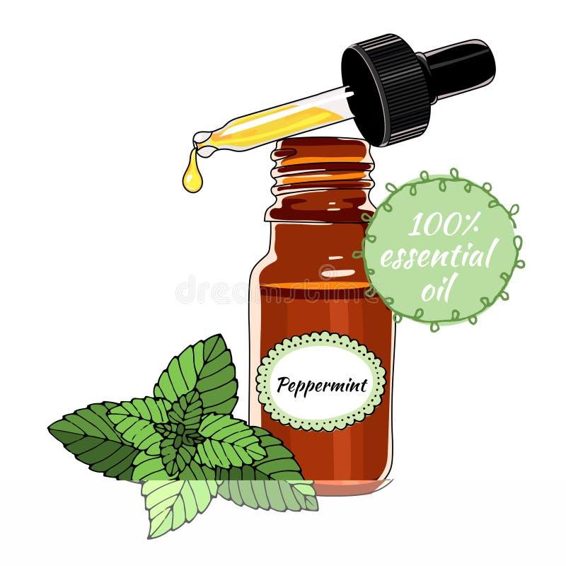 Bottiglia dell'olio essenziale della menta piperita con il contagoccia illustrazione di stock