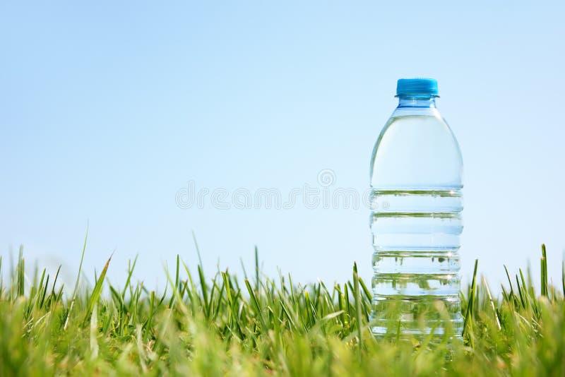 Bottiglia di acqua su erba verde fotografia stock libera da diritti