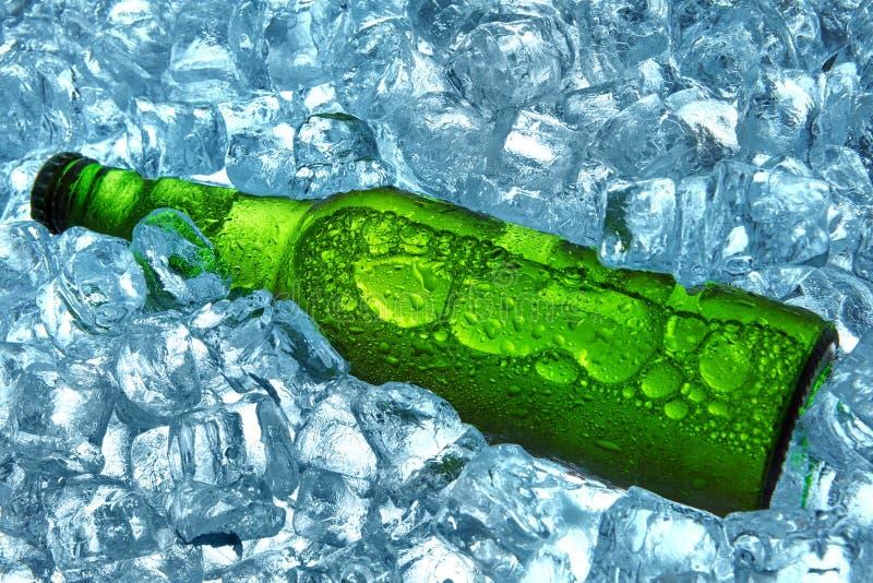 Bottiglia di birra in cubetti di ghiaccio closeup Bottiglia verde Bevanda fresca di estate calda immagini stock libere da diritti