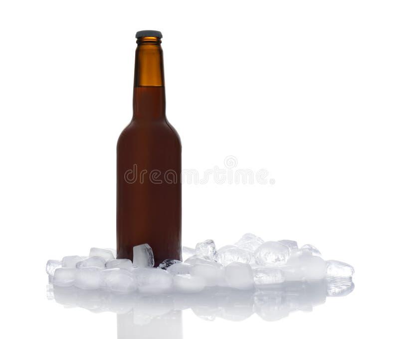 Bottiglia di birra e dei cubetti di ghiaccio fotografia stock