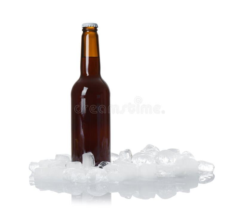 Bottiglia di birra e dei cubetti di ghiaccio immagini stock libere da diritti