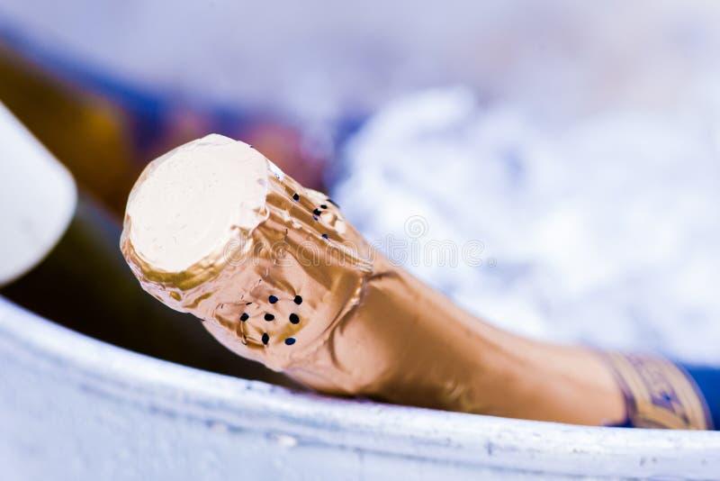 Bottiglia di Champagne in un secchiello del ghiaccio fotografia stock libera da diritti