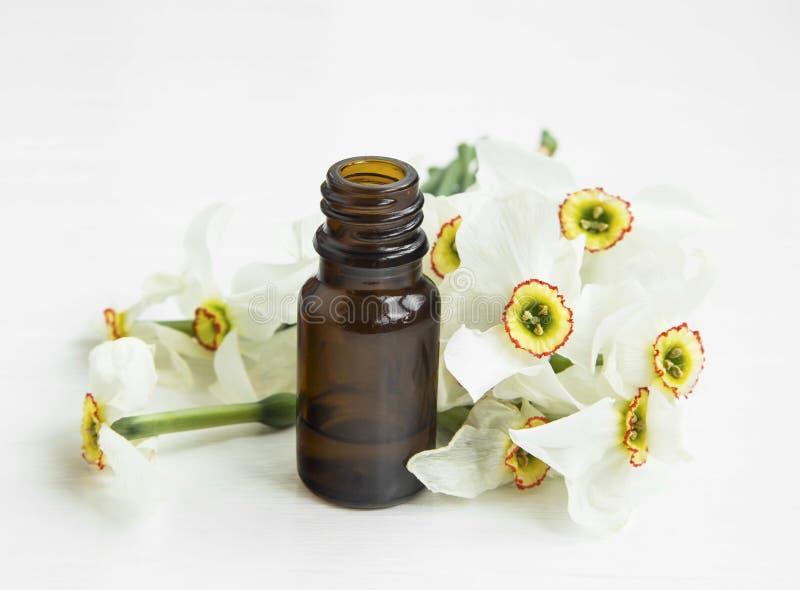 Bottiglia di oli essenziali di Daffodlils immagine stock