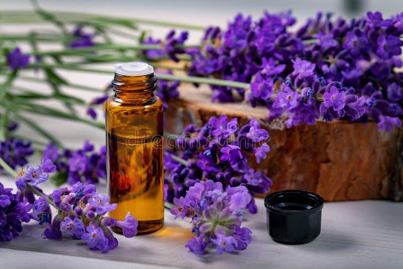 Bottiglia di olio essenziale della lavanda con i fiori freschi fotografia stock libera da diritti