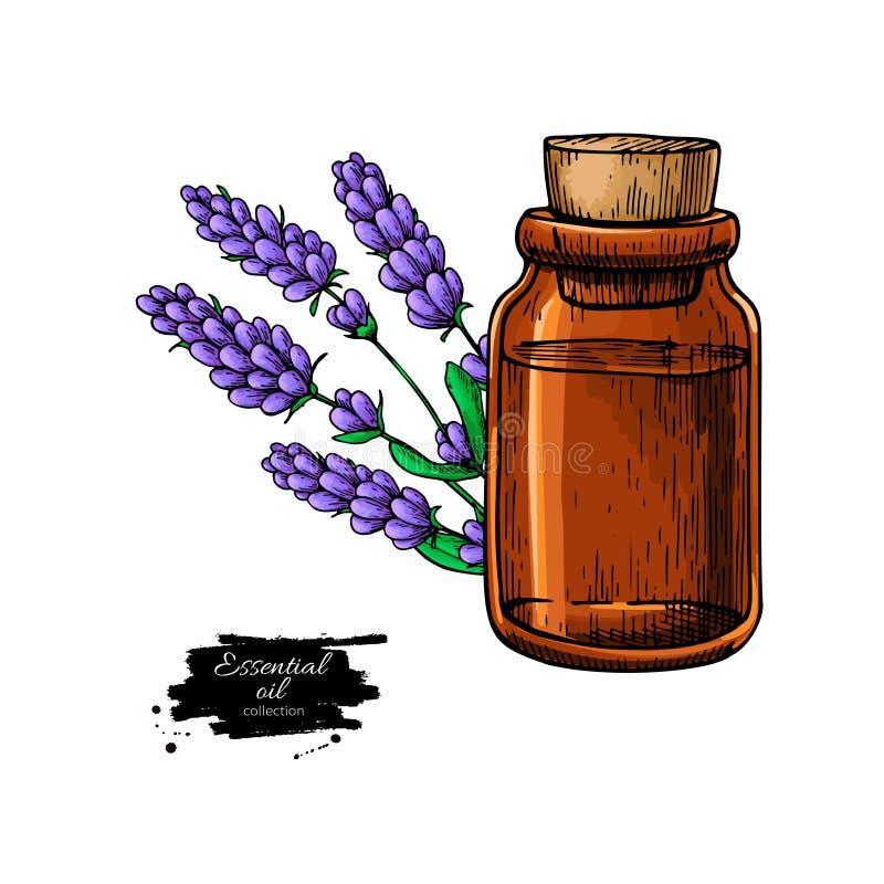 Bottiglia di olio essenziale di Lavander e mazzo di fiori VE disegnata a mano illustrazione vettoriale