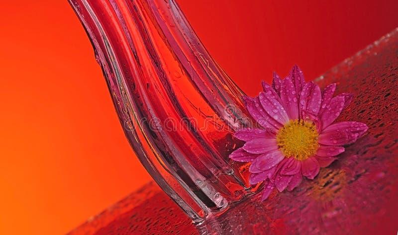 Download Bottiglia Di Profumo Con Un Fiore Fotografia Stock - Immagine di fresco, femminile: 7313922