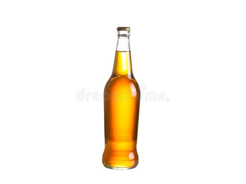 Bottiglia di sidro, isolata su fondo bianco fotografia stock libera da diritti