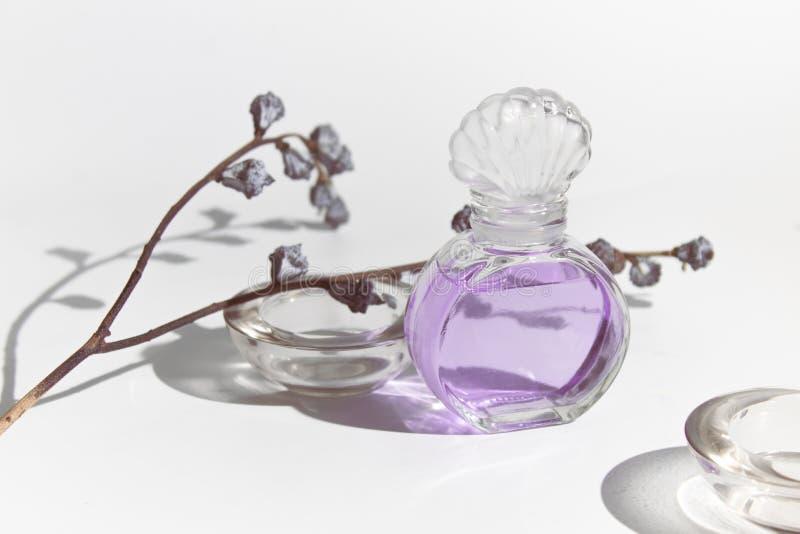 Bottiglia di vetro del modello della lavanda dell'odore di bellezza cosmetica porpora del profumo con la flora secca del fiore su immagini stock libere da diritti