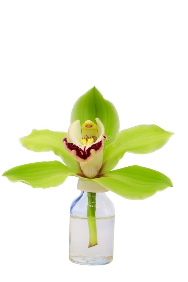 Bottiglia di vetro dell'orchidea isolata su fondo bianco fotografie stock