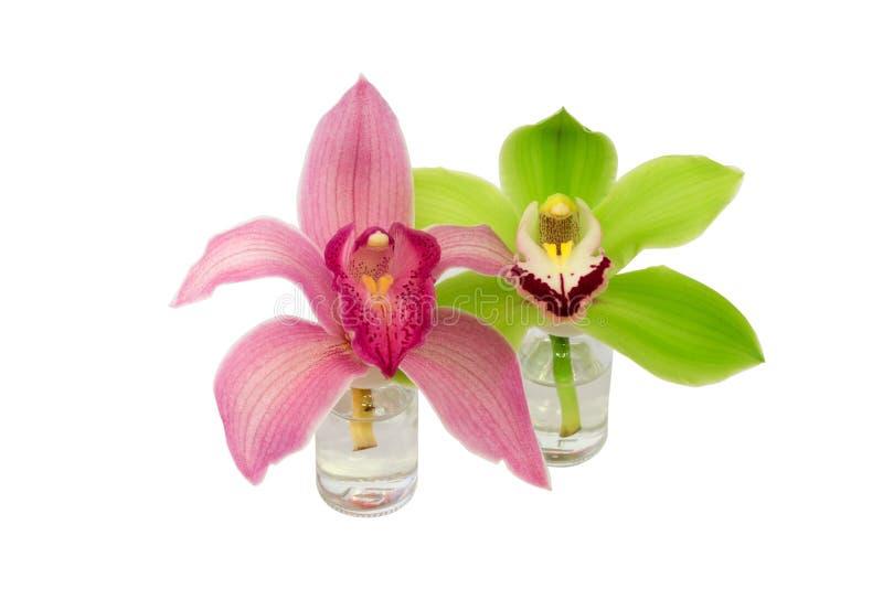 Bottiglia di vetro dell'orchidea isolata su fondo bianco fotografia stock libera da diritti