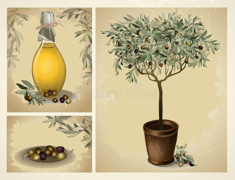 Bottiglia di vetro di olio d'oliva vergine premio e di determinate olive con le foglie royalty illustrazione gratis