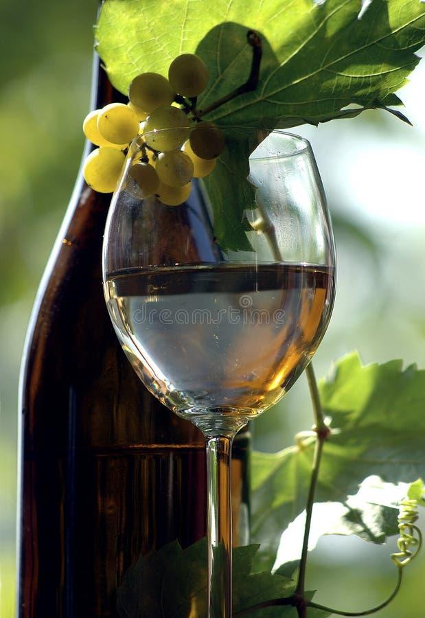 Bottiglia di vino fotografia stock