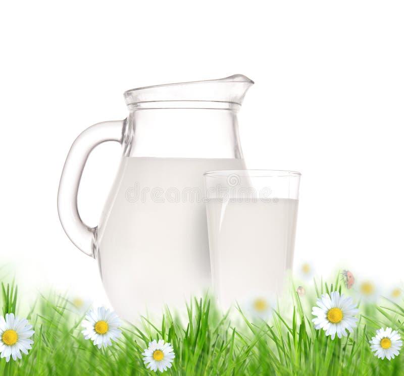 Bottiglia e vetro di latte con erba illustrazione di stock