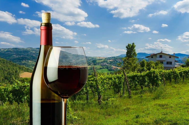 bottiglia e vetro di vino rosso sui precedenti della vigna nel Tu immagine stock