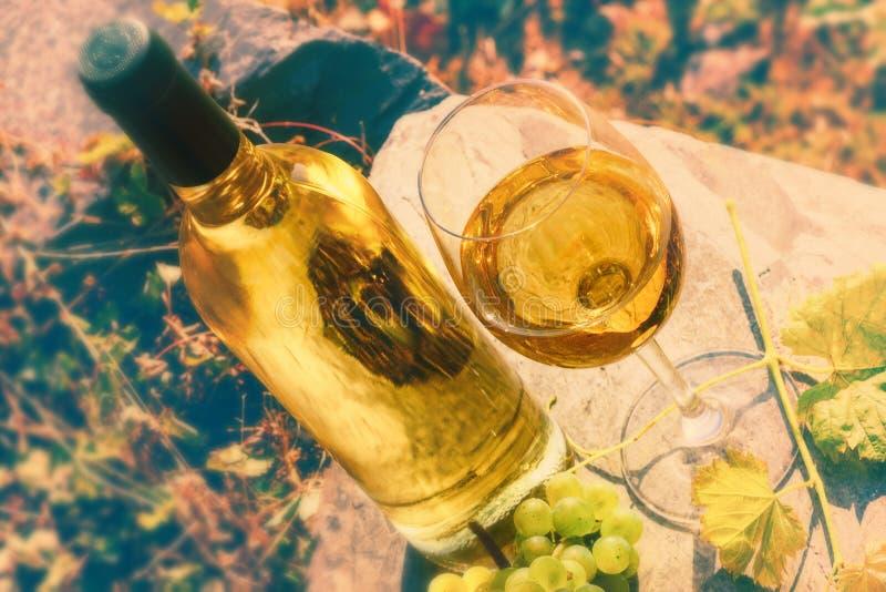 Bottiglia e vetro pieno di vino bianco sopra il fondo della vigna Wi fotografia stock