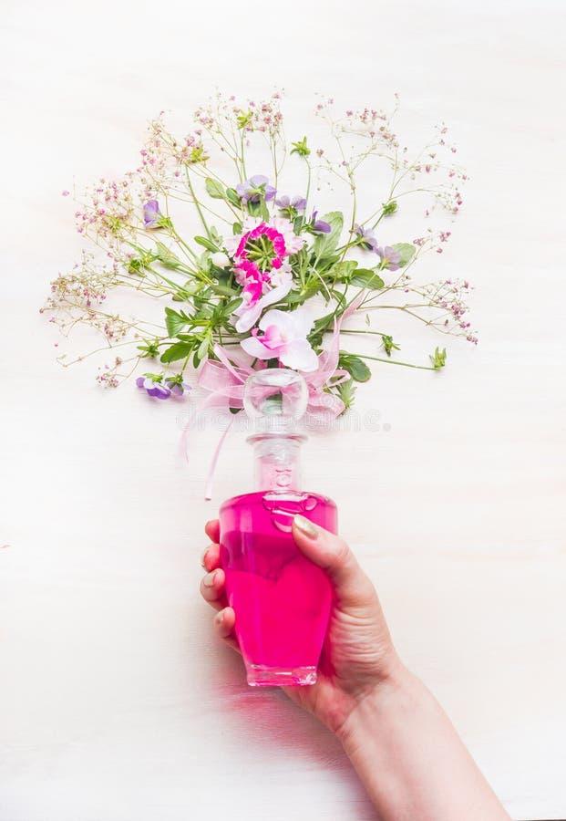 Bottiglia femminile della tenuta della mano con il mazzo rosa della lozione e dei fiori e delle erbe su fondo di legno bianco, vi immagine stock