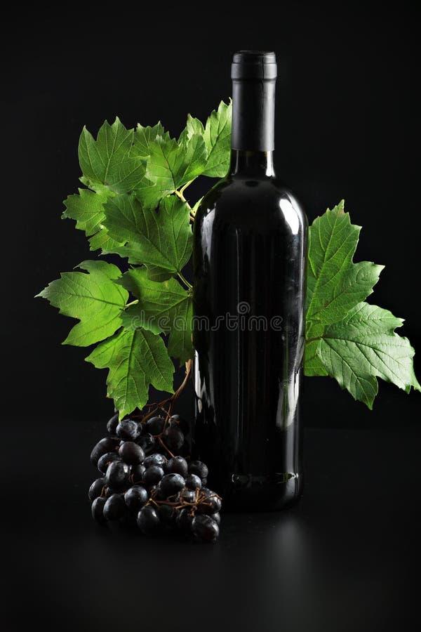 Bottiglia nera fotografia stock