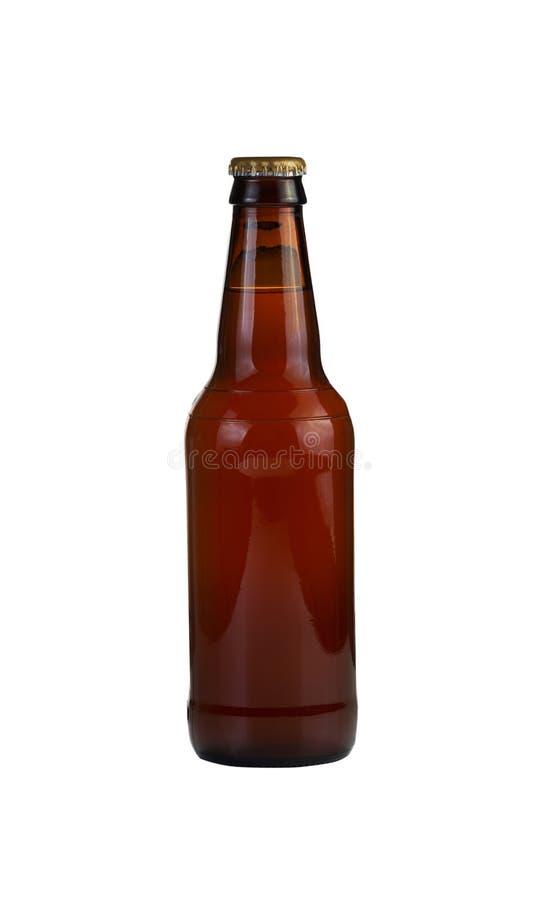 Bottiglia non aperta di birra isolata su bianco fotografia stock