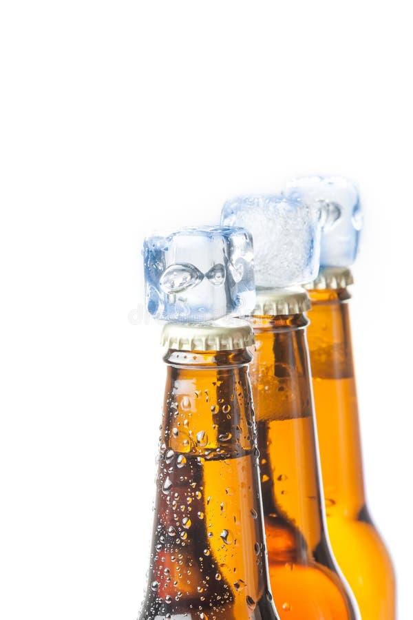 Bottiglia tre di birra fresca con ghiaccio e gocce fotografie stock libere da diritti