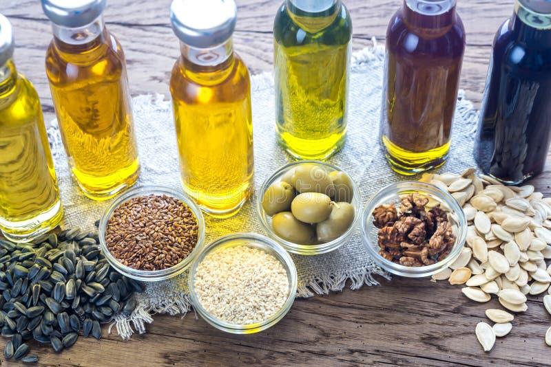 Bottiglie con differenti generi di olio vegetale fotografia stock libera da diritti