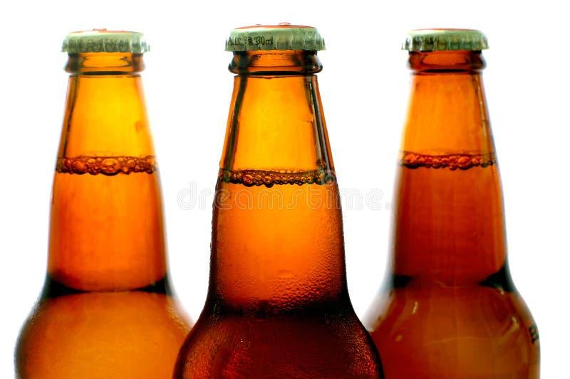 Bottiglie da birra immagine stock libera da diritti