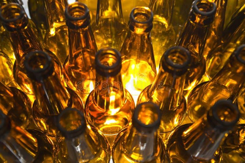 Bottiglie da birra di vetro vuote immagine stock libera da diritti