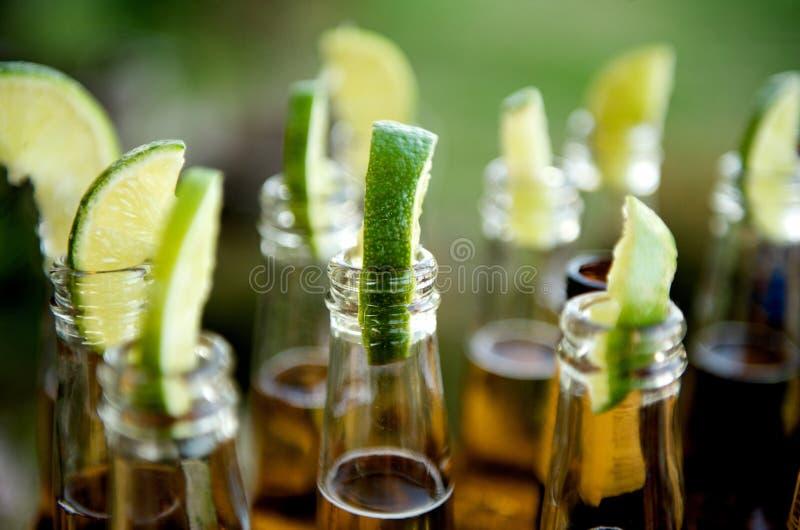 Bottiglie da birra inserite con le calce immagine stock