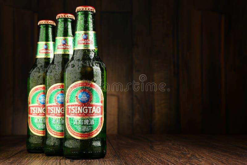Bottiglie dell'albero della birra di Tsing-Tao immagine stock libera da diritti