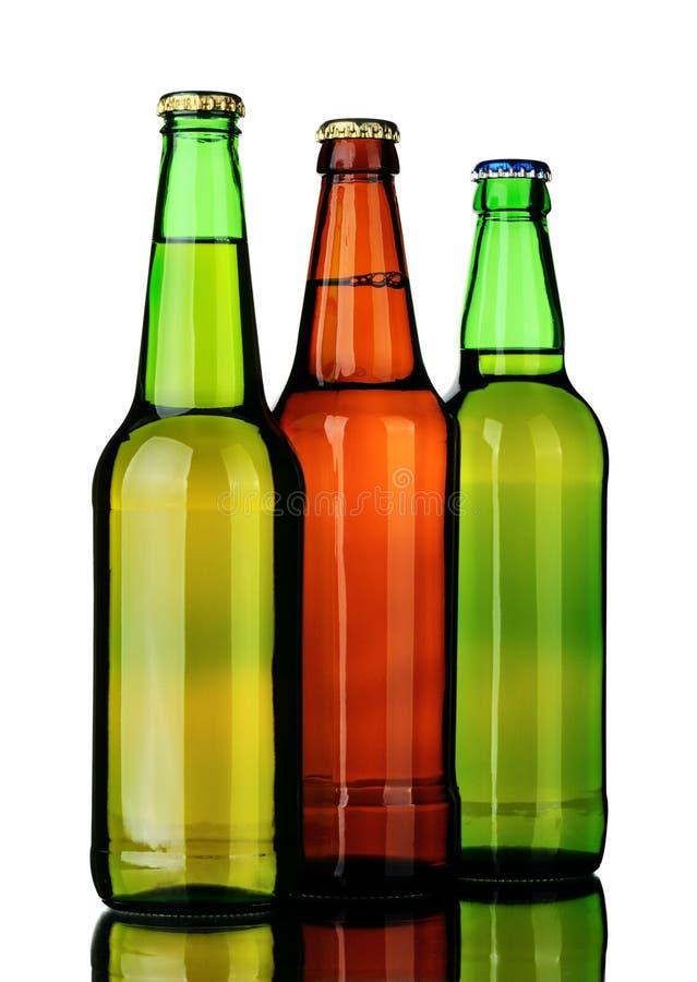 Bottiglie dell'albero di birra fotografia stock