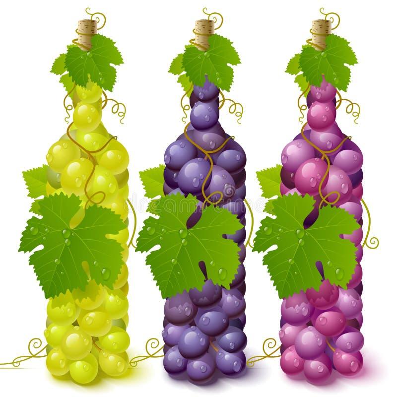 Bottiglie dell'uva della vite illustrazione vettoriale