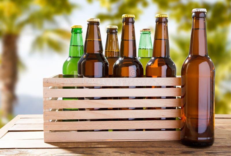 Bottiglie di birra del mestiere sulla tavola di legno su fondo tropicale vago fotografie stock libere da diritti