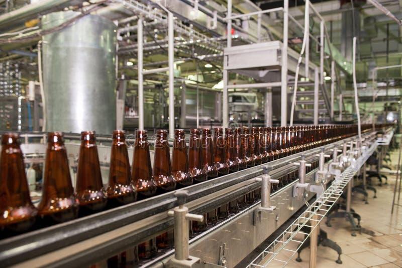 Bottiglie di birra sul trasportatore immagini stock libere da diritti