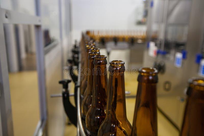 Bottiglie di birra vuote, su un nastro trasportatore, fabbrica di birra obbligatoria fotografia stock libera da diritti