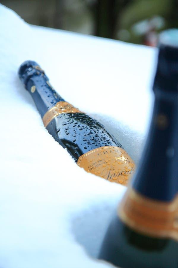 Bottiglie di Champagne in neve immagine stock libera da diritti