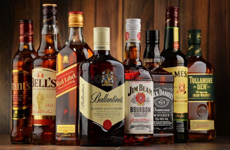 Bottiglie di parecchie marche del whiskey da U.S.A., dall'Irlanda e dalla Scozia immagini stock
