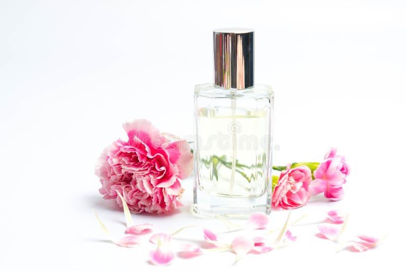 Bottiglie di profumo e garofani rosa su fondo bianco fotografia stock