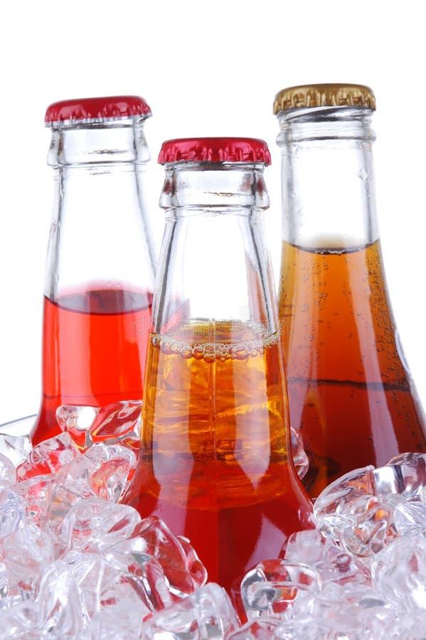 Bottiglie di soda in benna di ghiaccio fotografia stock