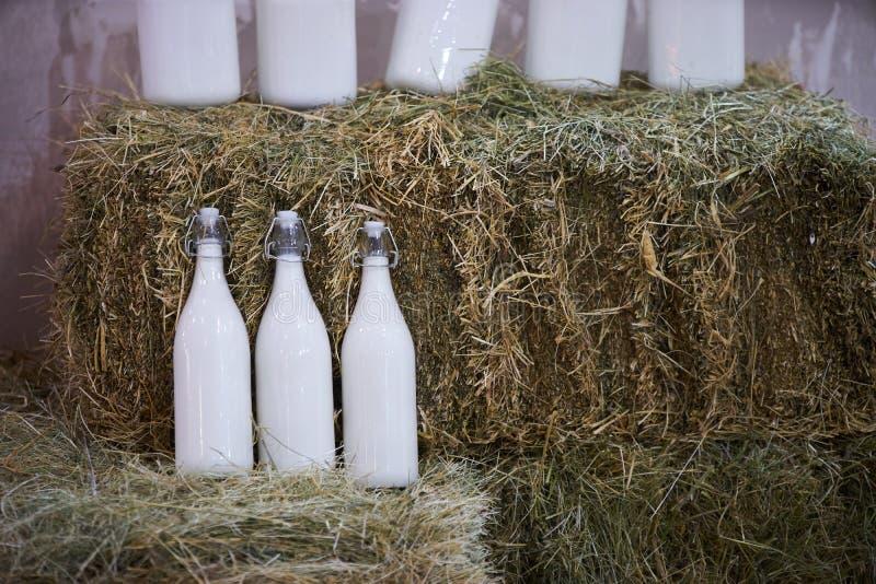 Bottiglie di vetro con latte di vacca fresco in un fieno, primo piano Industria di agricoltura immagine stock libera da diritti