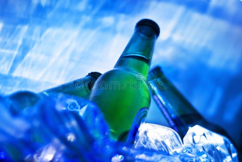 Bottiglie in ghiaccio. Birra. immagini stock
