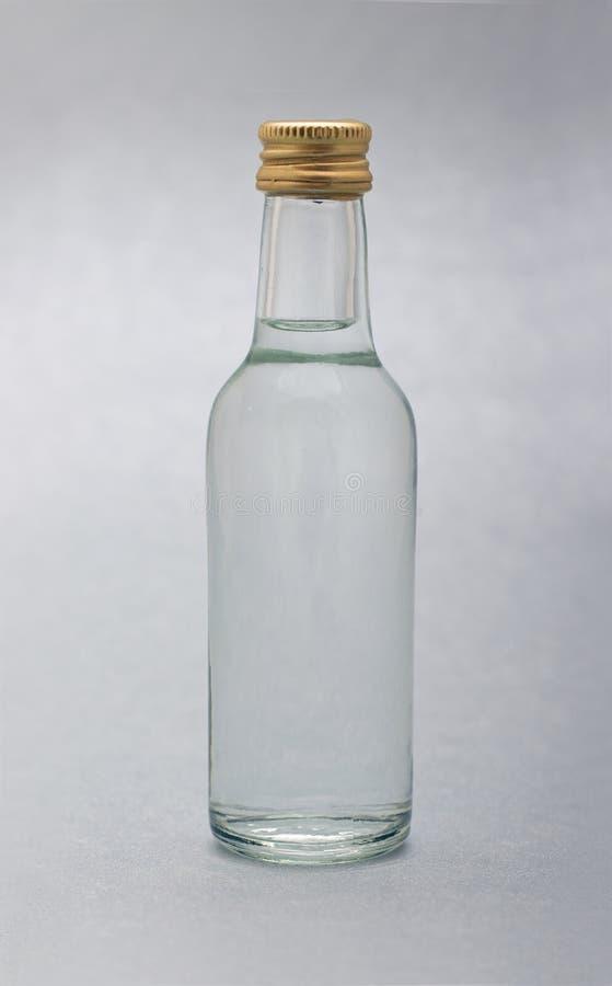 Free Bottle Royalty Free Stock Photography - 6509387
