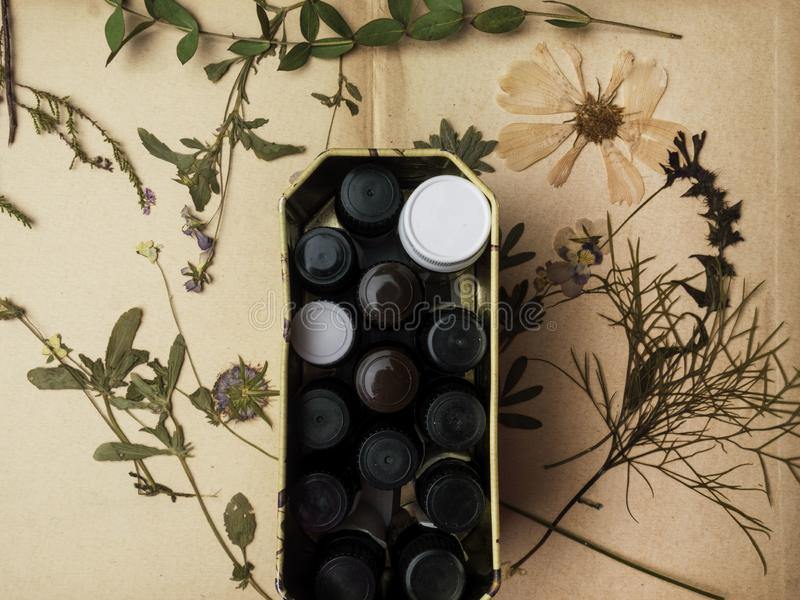 Bottle with aromatic essential oils in box and dry healthy herbs Close-up. Selective focus. Spa and perfume theme stock photography