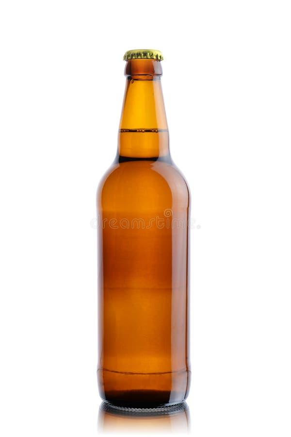 Bottle beer stock image