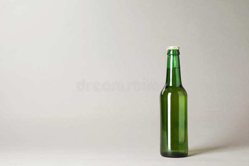 Bottle of beer on grey background royalty free stock images