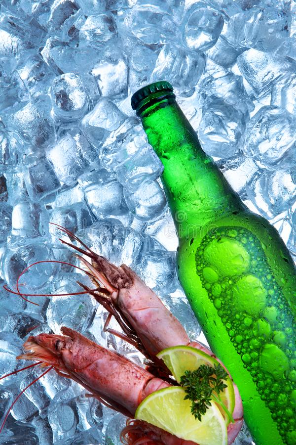 Bottle of beer with royal shrimp ice cubes.Closeup.Green bottle.Hot Summer fresh drink.Copy space royalty free stock image